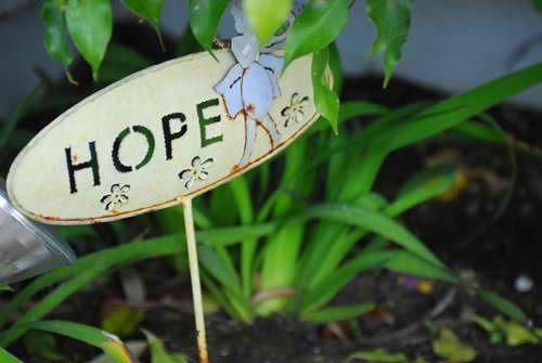 original_hope